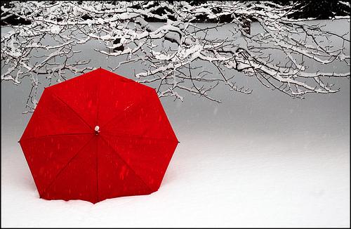 payung-merah-bersalju